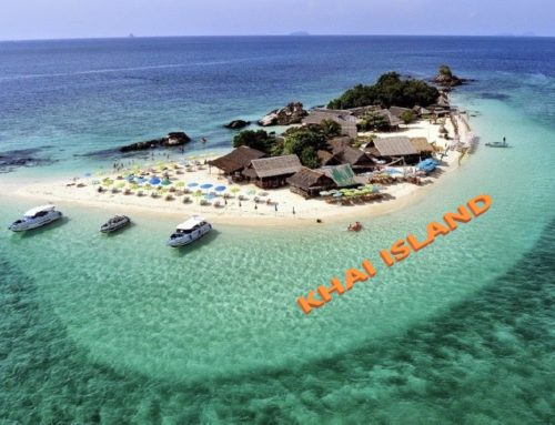 Phi phi 4 islands 9 points package By Speed Boat