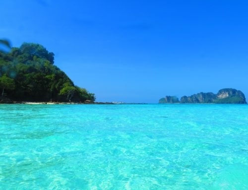 Phi phi + Bamboo Island Package By Speed Boat